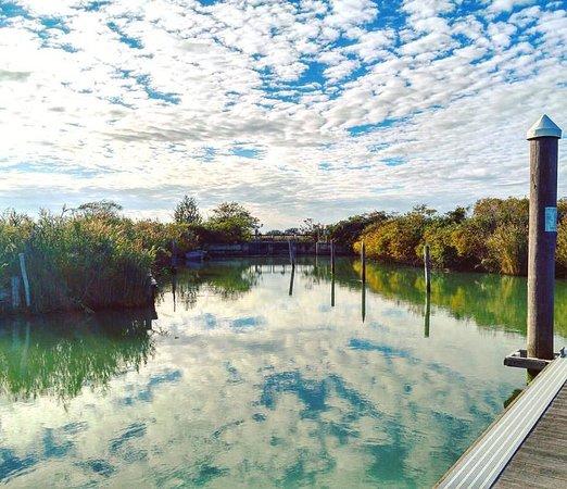 Emilia-Romagna, Italy: Gorino Ferrarese, Po Delta Park. Ferrara