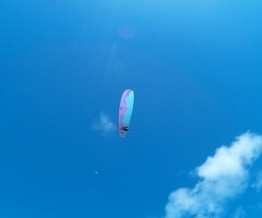 Paia, Havai: para-sailers were having a blast!