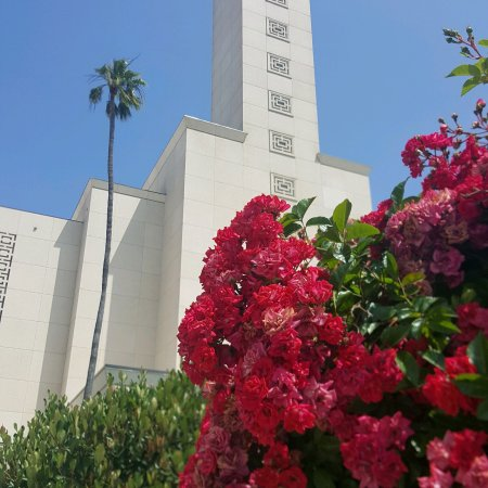 ‪Los Angeles California Temple, The Church of Jesus Christ of Latter-Day Saints‬