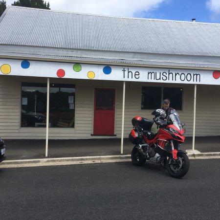 The Mushroom at Waratah