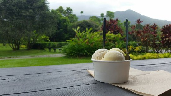 Diwan, Australia: ice cream in a wonderful garden