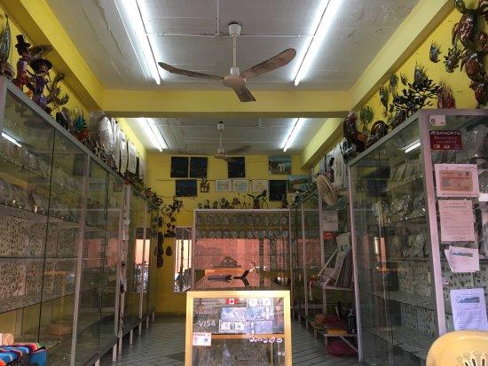 Galeria Lupita