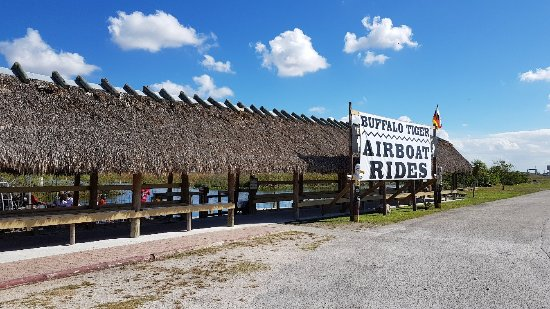 Buffalo Tiger's Airboat Tours : 20180215_102603_large.jpg