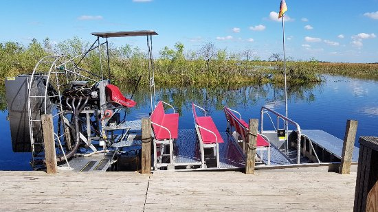 Buffalo Tiger's Airboat Tours Photo