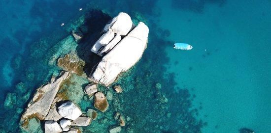 Roctopus潜水俱乐部