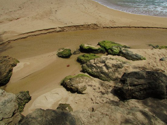 Kauai Photo Tours: Finding new perspectives