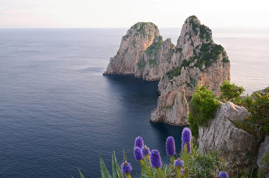 Tour privato inclusivo di Capri da
