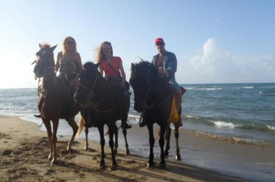 Beach and Mountain Horseback Riding...