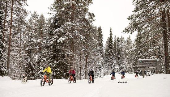 Paltamo, Finland: Winter Fatbiking in Hossa National Park