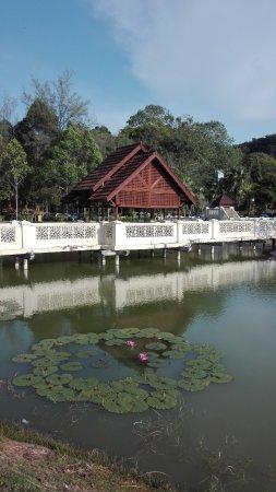 Langkawi Legend Park: Idyllic lotus pond