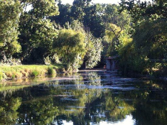 Benet, France: Balade pédestre au coeur de la Venise Verte au départ de L'Ecurie du Marais