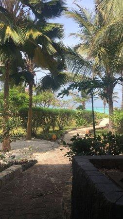 The Zanzibari: IMG-20180208-WA0003_large.jpg