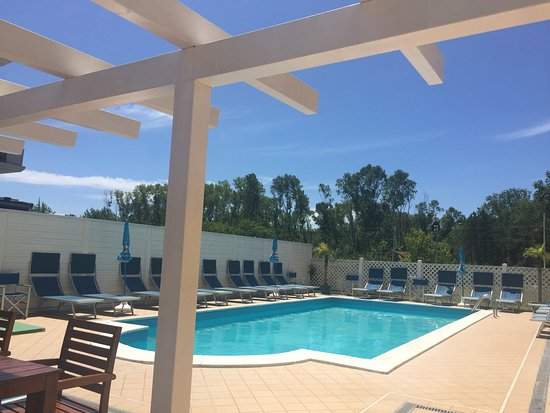 Hotel Viking: La piscina vista dal bar