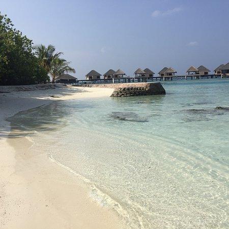 Vaadhoo Island : photo0.jpg