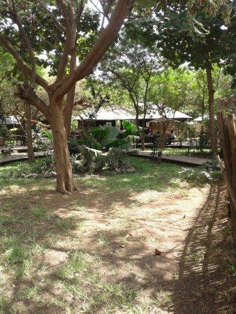 Bar and restaurant area