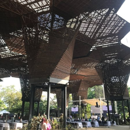 Jardin Botanico de Medellin: photo3.jpg