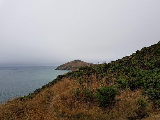 Dunedin, Nueva Zelanda: Harrington Point