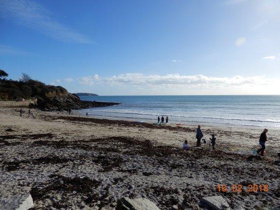 Swanpool Beach: Beach and sea