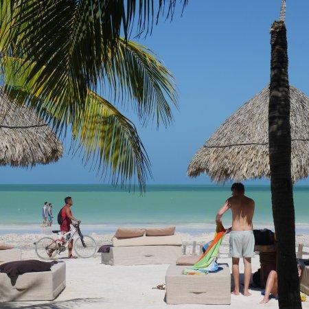 Holbox Hotel Casa las Tortugas - Petit Beach Hotel & Spa: photo0.jpg