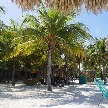 Holbox Hotel Casa las Tortugas - Petit Beach Hotel & Spa: photo3.jpg