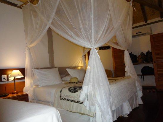 阿尼瑪飯店照片