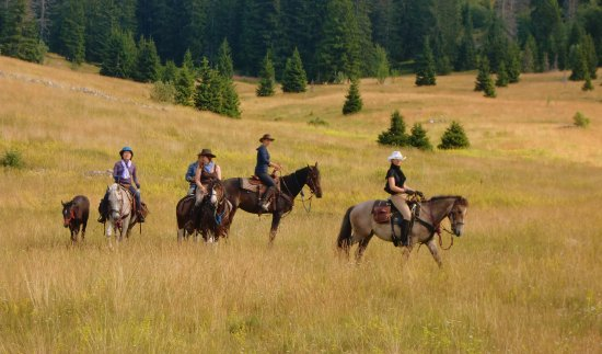 Linden Tree Retreat & Ranch - Private Day Tours