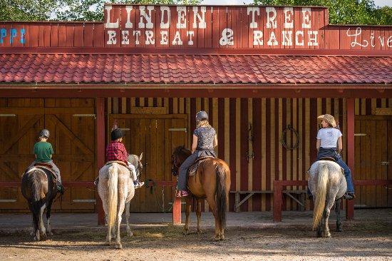 Velika Plana, โครเอเชีย: Horseback riding