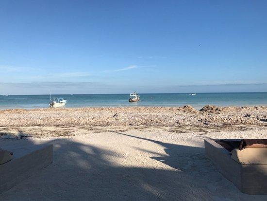 Holbox Hotel Casa las Tortugas - Petit Beach Hotel & Spa: The beach