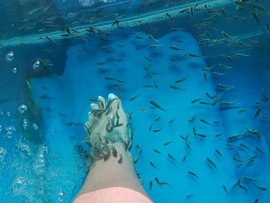 天然活海水疗法