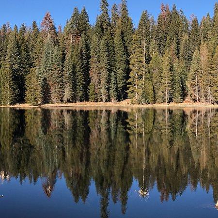Montecito Sequoia Lodge & Summer Family Camp: photo0.jpg