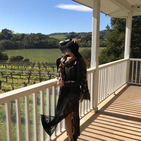 Napa Valley Wine Country Tours: photo0.jpg