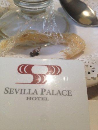 Снимок Sevilla Palace