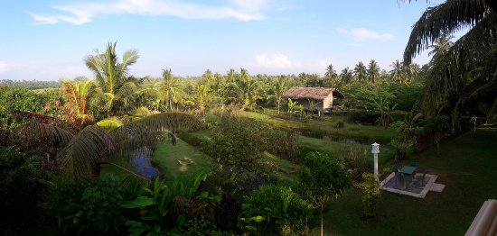 Shangri-Lanka Villa: view from room 5