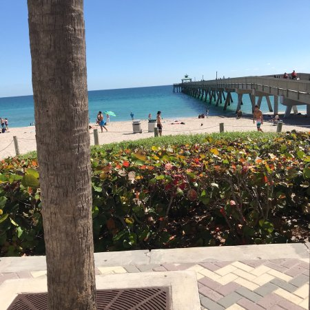 Deerfield Beach Cafe: photo4.jpg