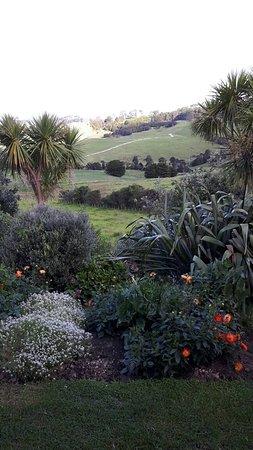 Matakohe, نيوزيلندا: 20180212_175206_large.jpg