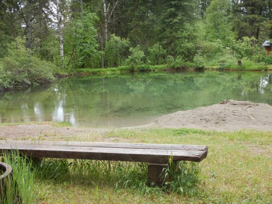 Skookumchuck, Kanada: Cold Water swimming pond  and the sand pile for sand castles