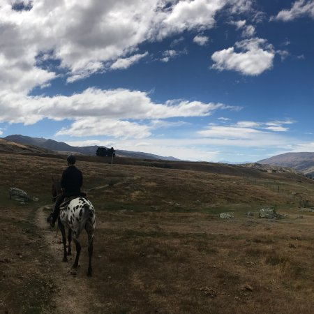 Backcountry Saddle Expeditions: photo0.jpg