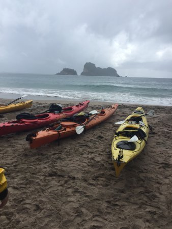 Cathedral Cove Kayak Tours: On the beach in Cathedral Cove