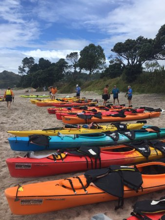 Cathedral Cove Kayak Tours: The part and end point at Hahei Beach