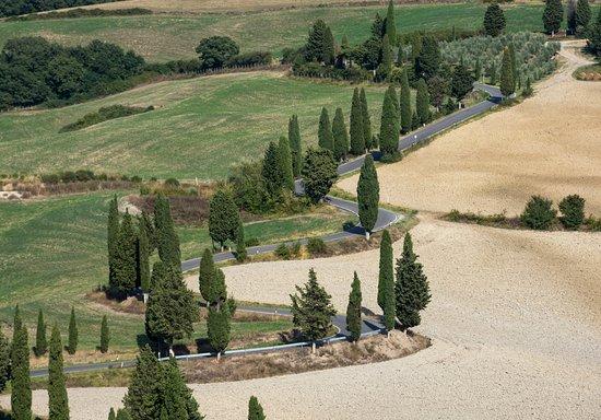 Monticchiello, İtalya: Famous road near the village