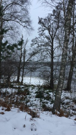 Aviemore, UK: IMG-20180215-WA0001_large.jpg