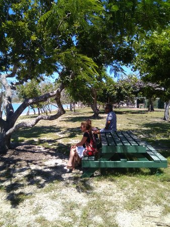 Dingo Beach, Αυστραλία: IMG_20180215_133057_large.jpg