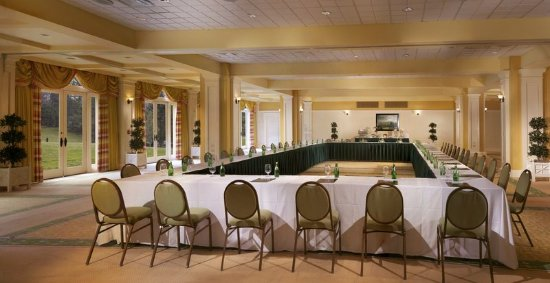 Hot Springs, VA: Meeting room