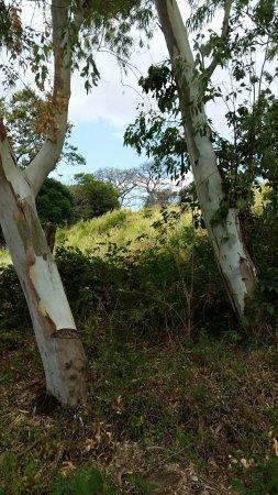 San Ramon, Nicaragua: 20180216_132831_large.jpg