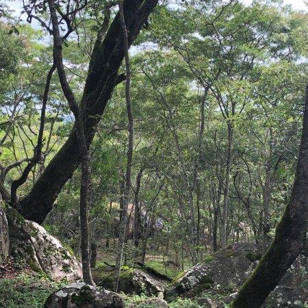 Masvingo, Zimbabwe : photo6.jpg