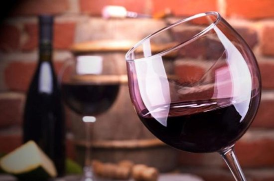 Malbec Wine Full-Day Tour til Mendoza