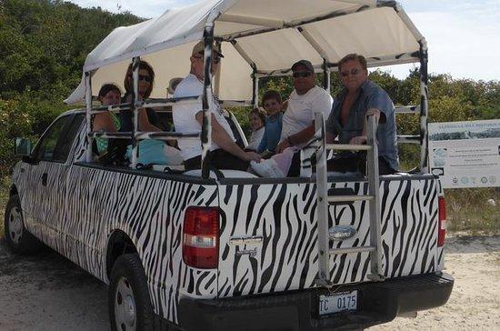 Private maßgeschneiderte Safari-Tour