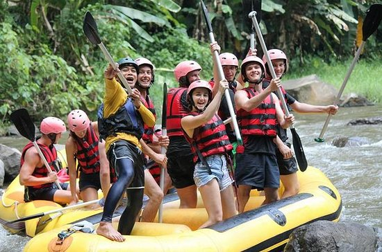Awesome Ubud rafting and Swing with...