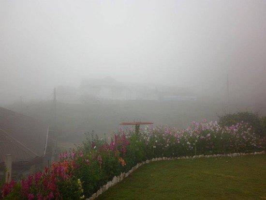 Landscape - Picture of Tea Bush Hotel, Nuwara Eliya - Tripadvisor