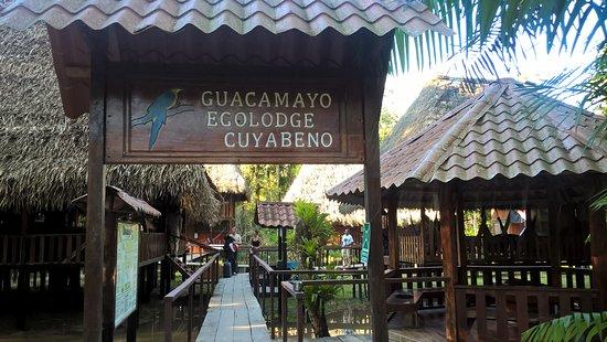 Cuyabeno Lodge: 1